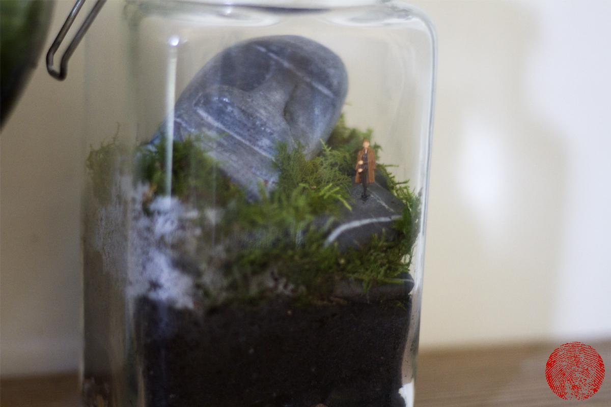 Terrariums A Garden In A Glass Mat Arney